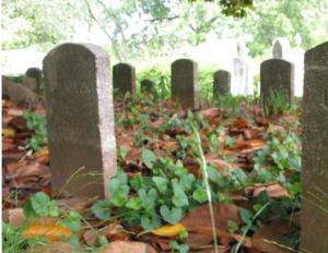 geschiedenis achter de grafstenen